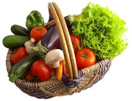 Découvrez nos produits bio dans la boutique